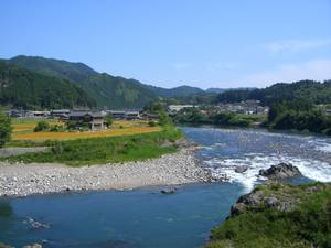 Ayu of the Nagara River System Japan