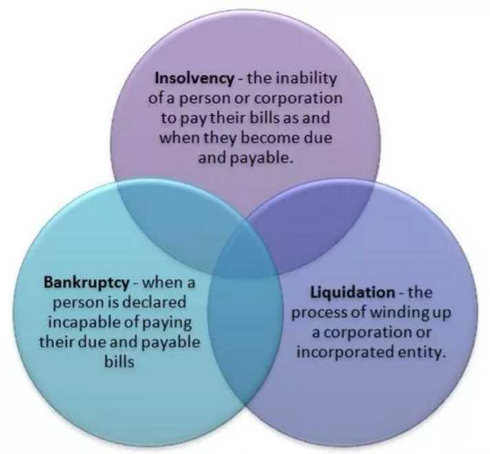 Insolvency, Bankruptcy and Liquidation